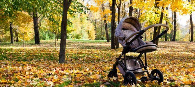 Kinderwagenrundgänge mit Picknick